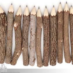 Rustic Wooden Pencil