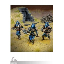 Empire of Dust Enslaved Guardian Regiment - KOW