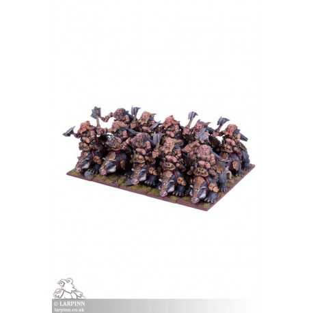 Dwarf Brock Riders Regiment - KOW